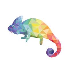 Chameleon color