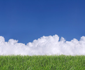 Seamless Clouds and Grass