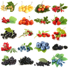 Collection of ripe berries