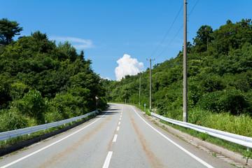 道路と入道雲