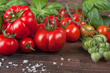 Sonnengereifte Tomaten und Basilikum