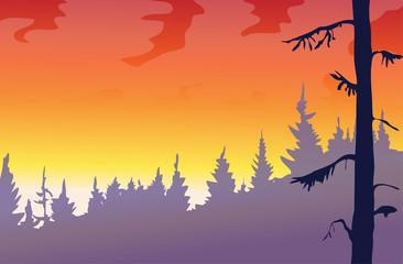 Sunset vector landscape.