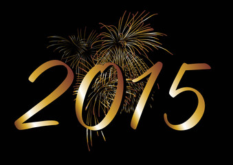 Feuerwerk 2015