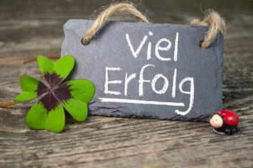 Kreidetafel mit Kleeblatt und Marienkäfer