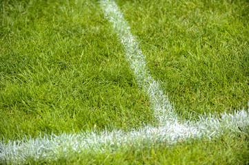 Fußballrasen mit weißen Linien