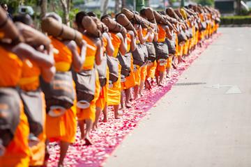Row of Buddhist hike Thai monks rose petals