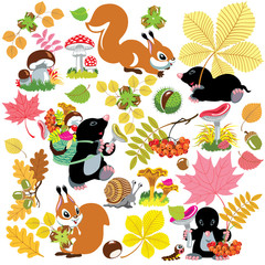 set with harvest of autumnal forest