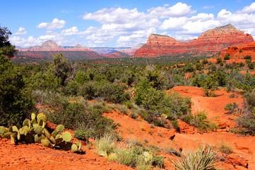 Red rock desert landscape of Sedona, Arizona, USA