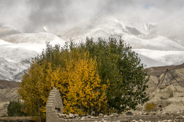 Autumn and winter in the Himalayas, Mustang