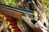 Gun, duck and hunting ammunition poster