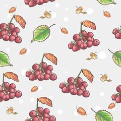 berries and autumn leaves of Viburnum