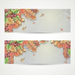 autumn leaves, chestnuts, acorns and berries of viburnum.