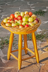 Apples in a wicker tray on a stool