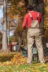 Gardener raking up