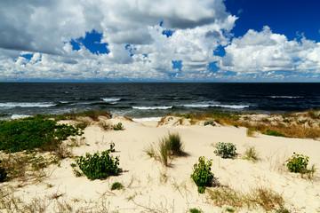 Beautiful baltic dunes