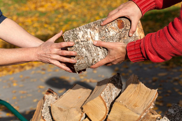 Hands holding wood