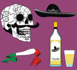 mexican skull floriture and drink