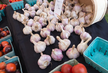 Garlic at Farmers Market