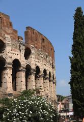 Coliseu (Colosseo) Roma - Itália
