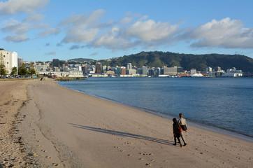 Oriental bay in Wellington New Zealand
