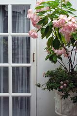 Wooden white door with pink flower