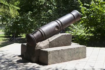 Крепостное орудие форта Лазарева