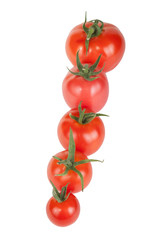 tomatoes constructed in a row isolated on white background