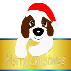 Saint Bernard dog with Santa hat wishing Merry Christmas