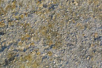 Texture di Pietra con sfumature