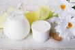 Fresh dairy products - sour cream, milk