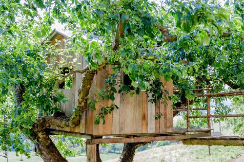 Leinwanddruck Bild Baumhaus