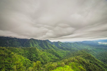 stormy clouds over mountain and Rain forest
