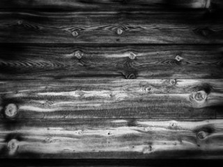 Old Wood Background with Twigs  - Bw