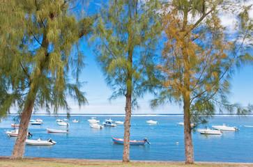 lagon sous les filaos, Etang-Salé ,île de la Réunion