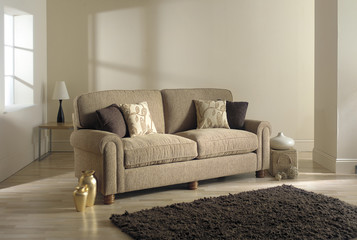 sofa in modern living room with rug