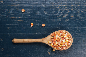 wooden spoon full of dry corn on the blue table