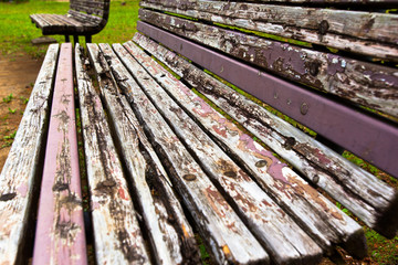 Old two benches in an urban park