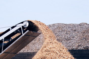 conveyor poring sawdust