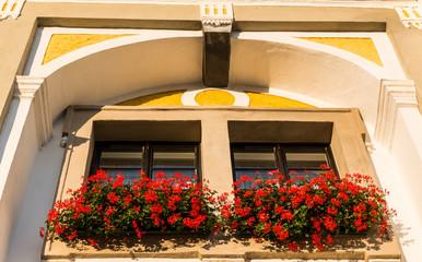 Fenster mit alter Hausfassade und Blumen