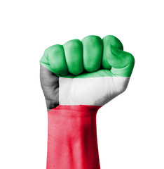 Fist of Kuwait flag painted