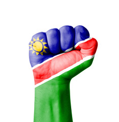 Fist of Namibia flag painted