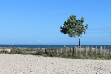 La belle vue sur la Grande plage de Carnac