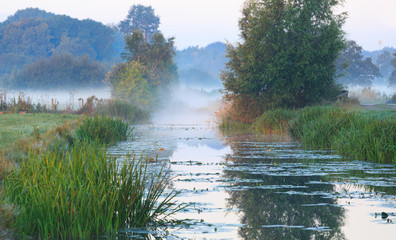 Creek during a foggy sunrise in the countryside.