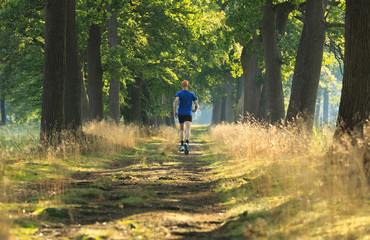 Man trailrunning in a lane of tree's on a sunny morning.