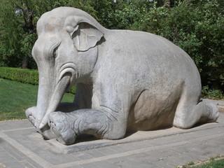 Elefant an den Ming Gräbern