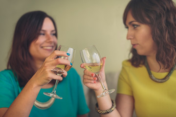 Two attractive women toasting each other with wine