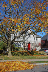 house with falling leaves in autumn