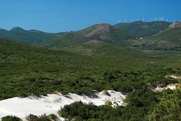 Cap corse, dunes de Barcaggio