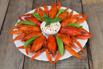 Plate with red boiled crayfish with white sauce on the side