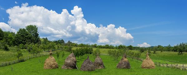 Haystacks at farm